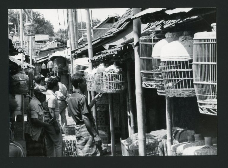 JAVA INDONESIA 1960s PHOTO ALBUM
