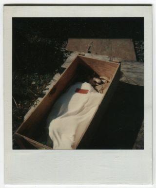 POST MORTEM PUP IN A COFFIN BOX COLOR POLAROID SNAPSHOT PHOTO