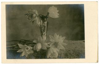 VASE OF FLOWERS REAL PHOTO POSTCARD 1913
