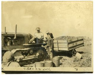 CHILD FARM LABOR CALIFORNIA PRESS PHOTO 1942 #1