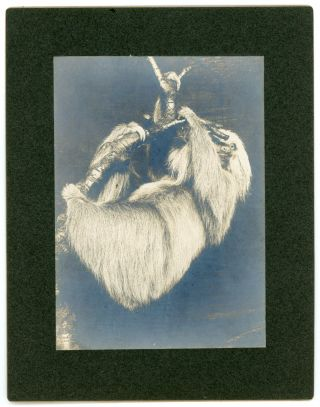 TAXIDERMY by REMI H. SANTENS - PHOTOS EARLY 1900s