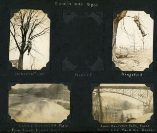 1929 MID-WEST TRAVEL PHOTO ALBUM WORKING ON TREES